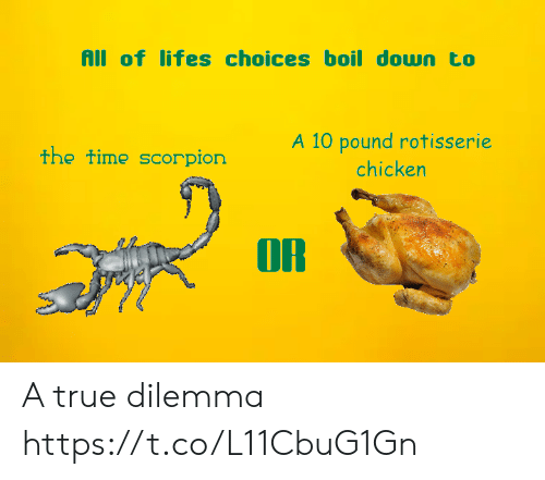 A 10: All of lifes choices boil down to  A 10 pound rotisserie  the time scorpion  chicken  OR A true dilemma https://t.co/L11CbuG1Gn