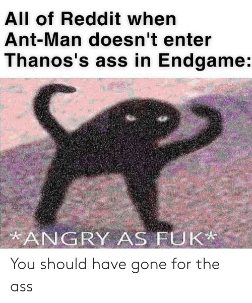 The Ass: All of Reddit when  Ant-Man doesn't enter  Thanos's ass in Endgame:  ANGRY AS FUK You should have gone for the ass