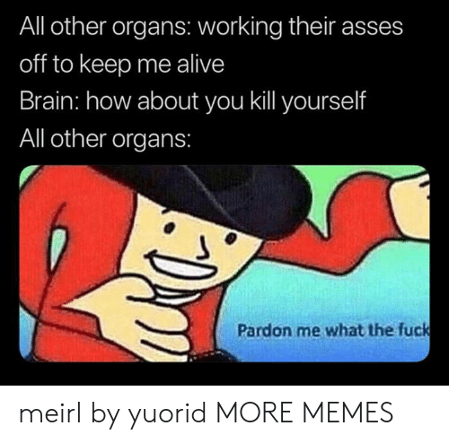 kill yourself: All other organs: working their asses  off to keep me alive  Brain: how about you kill yourself  All other organs:  Pardon me what the fuck meirl by yuorid MORE MEMES