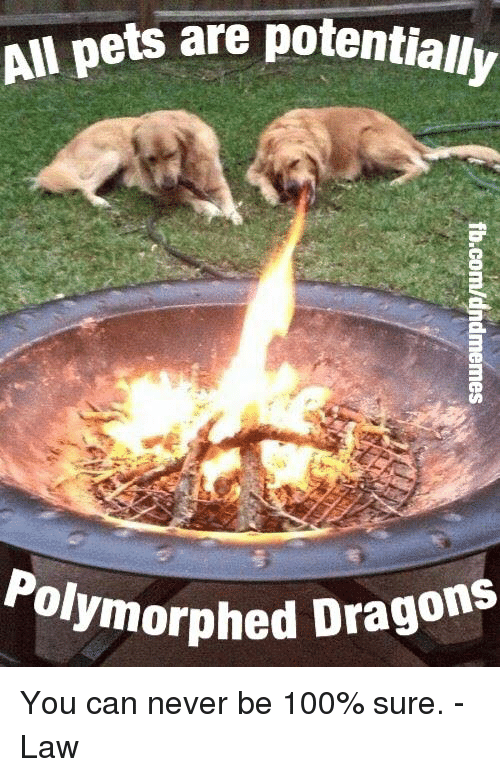 Anaconda, Pets, and DnD: All pets are potentially  olymorphed Dragons You can never be 100% sure.  -Law