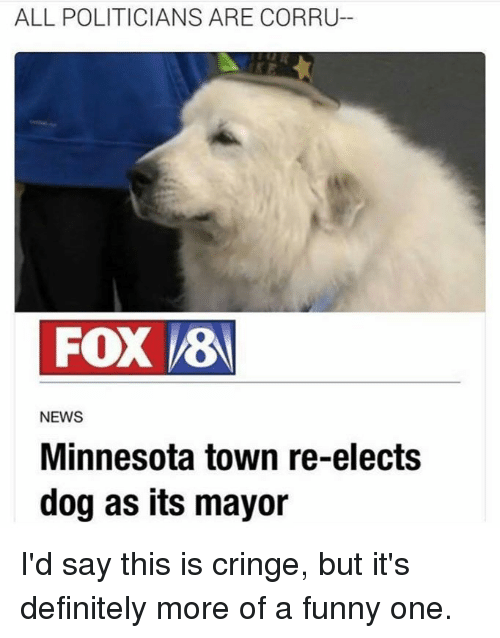 Definitely, Dogs, and Funny: ALL POLITICIANS ARE CORRU-  FOX VEB  NEWS  Minnesota town re-elects  dog as its mayor I'd say this is cringe, but it's definitely more of a funny one.