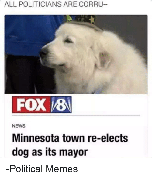 Dogs, Meme, and Memes: ALL POLITICIANS ARE CORRU  VEBN  FOX  NEWS  Minnesota town re-elects  dog as its mayor -Political Memes