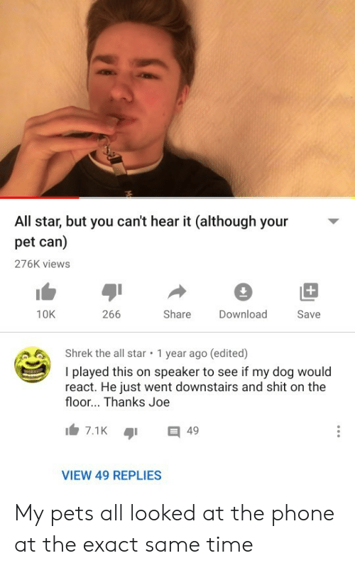 All Star: All star, but you can't hear it (although your  pet can)  276K views  +  266  Share  10K  Download  Save  Shrek the all star  1 year ago (edited)  I played this on speaker to see if my dog would  react. He just went downstairs and shit on the  floor... Thanks Joe  7.1K  49  VIEW 49 REPLIES My pets all looked at the phone at the exact same time