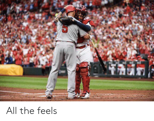 All The Feels: All the feels