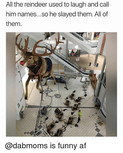 slayed: All the reindeer used to laugh and call  him names...so he slayed them. All of  them. @dabmoms is funny af