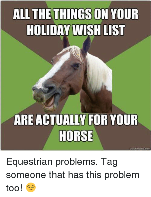 Quick Meme: ALL THE THINGS ON YOUR  HOLIDAY WISH LIST  ARE ACTUALLY FOR YOUR  HORSE  quick meme com Equestrian problems. Tag someone that has this problem too! 😏