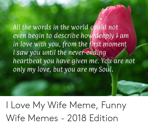 Love My Wife Meme: All the words in the world could not  even begin to describe how deeply t am  in love with you, from the first moment  I saw you until the never-ending  heartbeat you have given me. You are not  only my love, but you are my Soul. I Love My Wife Meme, Funny Wife Memes - 2018 Edition