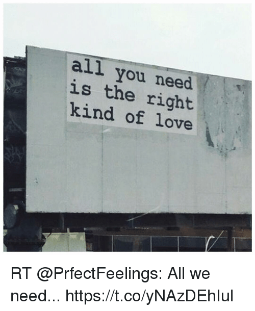 Love, Memes, and 🤖: all you need  LS  is the right  kind of love RT @PrfectFeelings: All we need... https://t.co/yNAzDEhIul