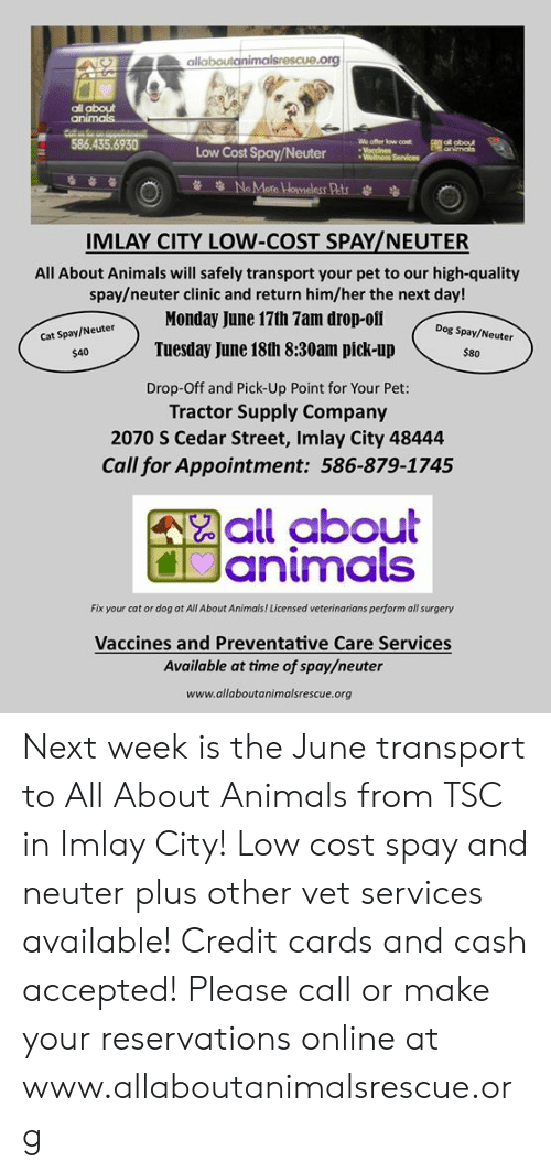 cat-or-dog: allaboutanimalsrescue.org  all about  animals  586.435.6930  We offer low cost  Voccines  Wellnoss Services  F ol obout  animals  Low Cost Spay/Neuter  NoMare Homeless Pats  IMLAY CITY LOW-COST SPAY/NEUTER  All About Animals will safely transport your pet to our high-quality  spay/neuter clinic and return him/her the next day!  Monday June 17th 7am drop-oif  Dog Spay/Neuter  Cat Spay/Neuter  Tuesday June 18th 8:30am pick-up  $80  $40  Drop-Off and Pick-Up Point for Your Pet:  Tractor Supply Company  2070 S Cedar Street, Imlay City 48444  Call for Appointment: 586-879-1745  all about  Janimals  Fix your cat or dog at All About Animals ! Licensed veterinarians perform all surgery  Vaccines and Preventative Care Services  Available at time of spay/neuter  www.allaboutanimalsrescue.org Next week is the June transport to All About Animals from TSC in Imlay City!  Low cost spay and neuter plus other vet services available!  Credit cards and cash accepted!   Please call or make your reservations online at www.allaboutanimalsrescue.org