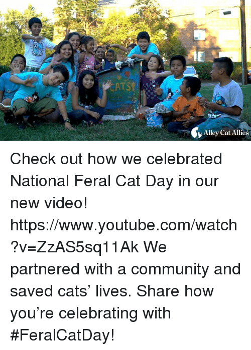 Cats, Community, and Memes: Alley Cat Allie Check out how we celebrated National Feral Cat Day in our new video!  https://www.youtube.com/watch?v=ZzAS5sq11Ak  We partnered with a community and saved cats' lives. Share how you're celebrating with #FeralCatDay!