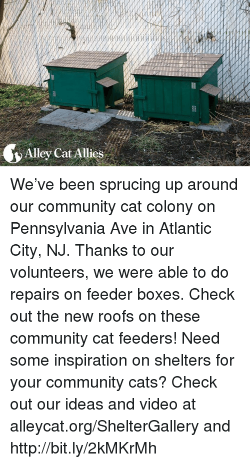 Atlante: Alley Cat Allies We've been sprucing up around our community cat colony on Pennsylvania Ave in Atlantic City, NJ. Thanks to our volunteers, we were able to do repairs on feeder boxes. Check out the new roofs on these community cat feeders! Need some inspiration on shelters for your community cats? Check out our ideas and video at alleycat.org/ShelterGallery and http://bit.ly/2kMKrMh