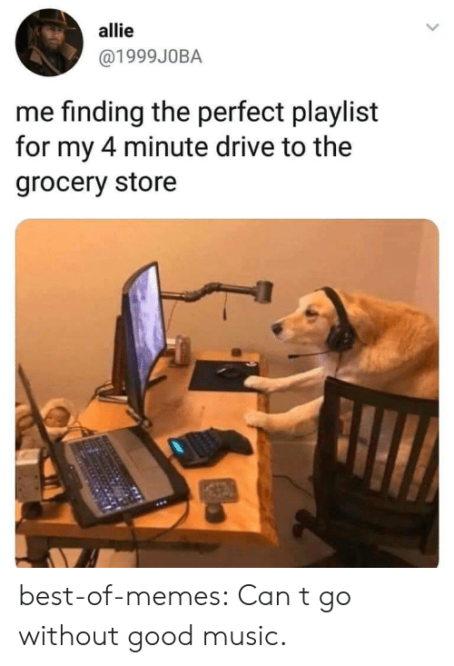 allie: allie  @1999J0BA  me finding the perfect playlist  for my 4 minute drive to the  grocery store best-of-memes:  Can t go without good music.