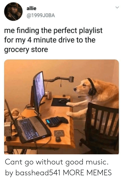 allie: allie  @1999J0BA  me finding the perfect playlist  for my 4 minute drive to the  grocery store Cant go without good music. by basshead541 MORE MEMES