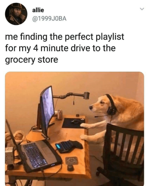 allie: allie  @1999J0BA  me finding the perfect playlist  for my 4 minute drive to the  grocery store