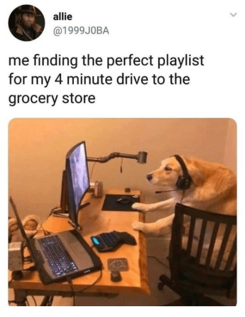 allie: allie  @1999JOBA  me finding the perfect playlist  for my 4 minute drive to the  grocery store