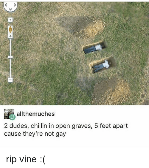 Memes, Vine, and 🤖: allthemuches  2 dudes, chillin in open graves, 5 feet apart  cause they're not gay rip vine :(