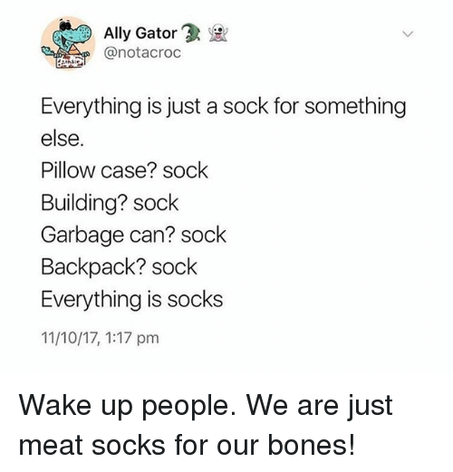Bones, Memes, and Ally: Ally Gator'  @notacroc  Everything is just a sock for something  else.  Pillow case? sock  Building? sock  Garbage can? sock  Backpack? sock  Everything is socks  11/10/17, 1:17 pm Wake up people. We are just meat socks for our bones!