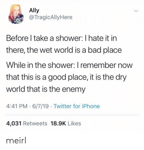 Ally: Ally  @TragicAlly Here  Before I take a shower: I hate it in  there, the wet world is a bad place  While in the shower: I remember now  that this is a good place, it is the dry  world that is the enemy  4:41 PM 6/7/19 Twitter for iPhone  4,031 Retweets 18.9K Likes meirl