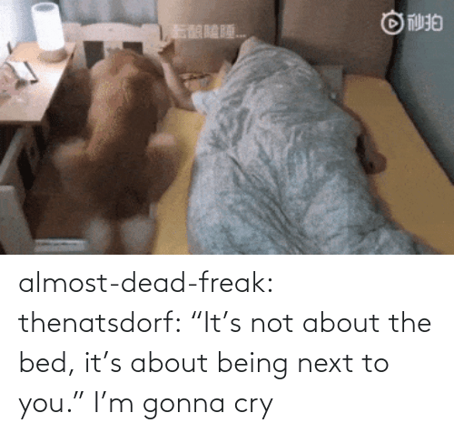 """Its Not: almost-dead-freak: thenatsdorf: """"It's not about the bed, it's about being next to you.""""  I'm gonna cry"""