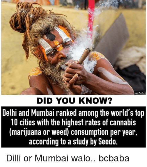 Memes, Weed, and Baba: alo baba  DID YOU KNOW?  Delhi and Mumbai ranked among the world's top  10 cities with the highest rates of cannabis  (marijuana or weed) consumption per year,  according to a study by Seedo. Dilli or Mumbai walo.. bcbaba