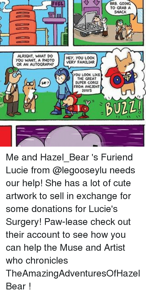the muses: ALRIGHT, WHAT DO  YOU WANT A PHOTO  OR AN AUTOGRAPH?  HEY, YOU LOOK  VERY FAMILIAR  YOU LOOK LIKE  THE GREAT  SUPER CORGI  FROM ANCIENT  BRB. GOING  TO GRAB A  SNACK  UZLI Me and Hazel_Bear 's Furiend Lucie from @legooseylu needs our help! She has a lot of cute artwork to sell in exchange for some donations for Lucie's Surgery! Paw-lease check out their account to see how you can help the Muse and Artist who chronicles TheAmazingAdventuresOfHazelBear !