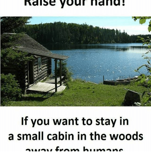cabin in the woods: alse Raise your mama  If you want to stay in  a small cabin in the woods