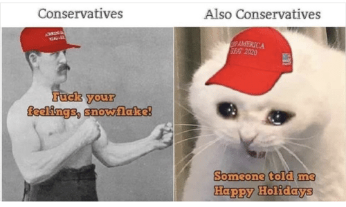 Conservatives: Also Conservatives  Conservatives  AMERICA  SEAT 2020  Fuck your  feelings, snovwlake!  Someone told me  Happy Holidays