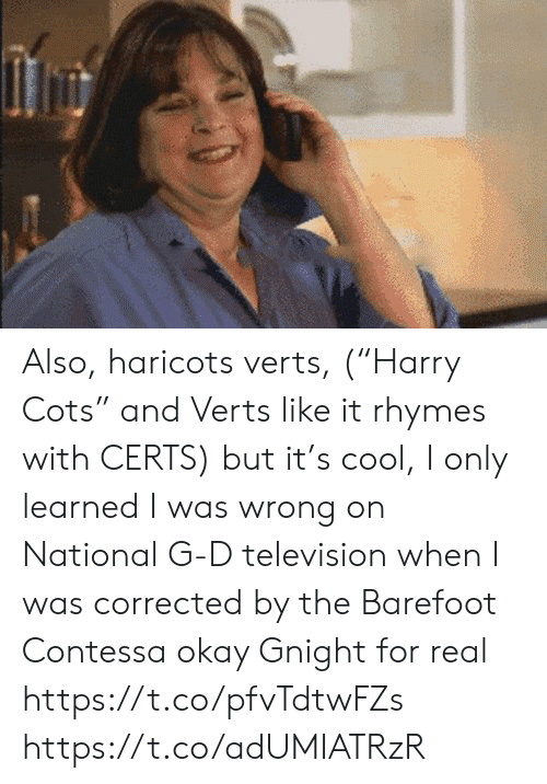 "Television: Also, haricots verts, (""Harry Cots"" and Verts like it rhymes with CERTS) but it's cool, I only learned I was wrong on National G-D television when I was corrected by the Barefoot Contessa  okay  Gnight for real https://t.co/pfvTdtwFZs https://t.co/adUMIATRzR"