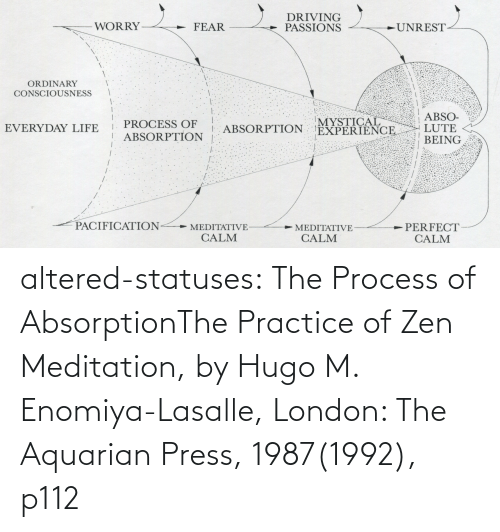 Meditation: altered-statuses:  The Process of AbsorptionThe Practice of Zen Meditation, by Hugo M. Enomiya-Lasalle, London: The Aquarian Press, 1987(1992), p112