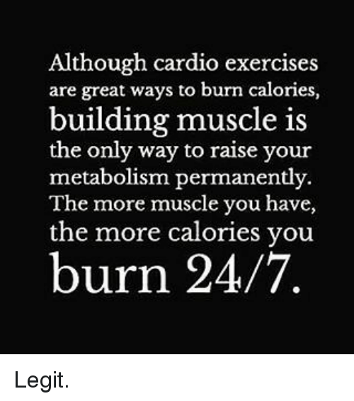 Gym, Exercise, and Cardio Exercises: Although cardio exercises  are great ways to burn calories,  building muscle is  the only way to raise your  metabolism permanently.  The more muscle you have,  the more calories you  burn 24/7 Legit.