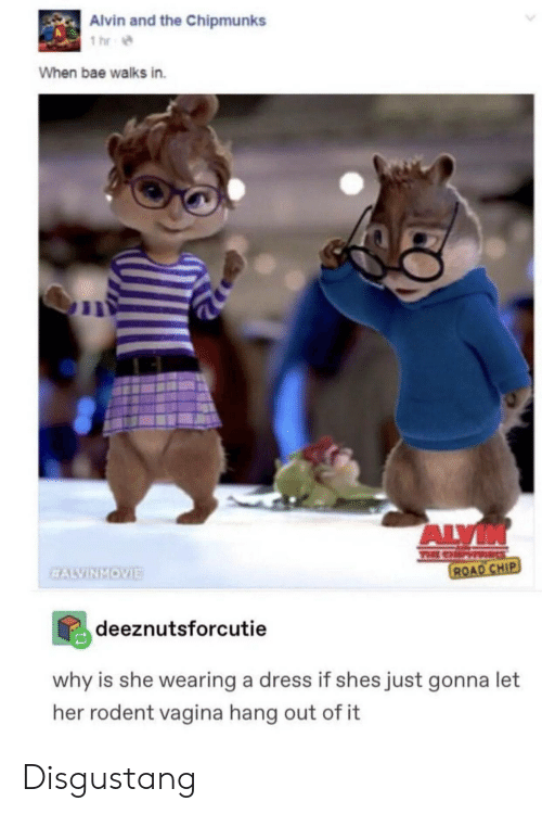 Bae, Dress, and Chip: Alvin and the Chipmunks  1 hr  When bae walks in.  ALVIN  TEE CHP  ROAD CHIP  EALVINMOVIE  deeznutsforcutie  why is she wearing a dress if shes just gonna let  her rodent vagina hang out of it Disgustang