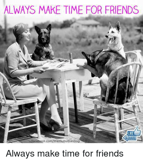 Facebook, Friends, and Memes: ALWAYS MAKE TIME FOR FRIENDS  facebook.com/WestsuburbanDog Always make time for friends