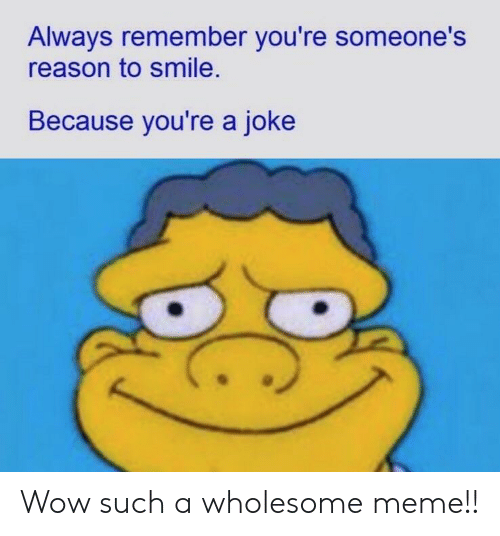 Wholesome Meme: Always remember you're someone's  reason to smile.  Because you're a joke Wow such a wholesome meme!!