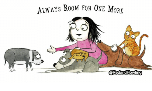 One More: ALWAYS ROOM FOR ONe MORE  @RedandHowling