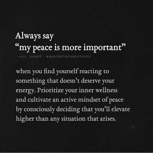 "Wellness: Always say  ""my peace is more important""  IDILAHMED MINDSETOFGREATNESS  when you find yourself reacting to  something that doesn't deserve you  energy. Prioritize your inner wellness  and cultivate an active mindset of peace  by consciously deciding that you'll elevate  higher than any situation that  arises."