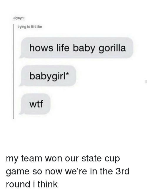 Memes, 🤖, and Gorilla: alycyn:  trying to flirt like  hows life baby gorilla  baby girl  wtf my team won our state cup game so now we're in the 3rd round i think
