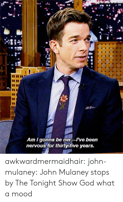 tonight show: Am I gonna be ner ve been  nervous for thirty-five years. awkwardmermaidhair: john-mulaney: John Mulaney stops by The Tonight Show  God what a mood