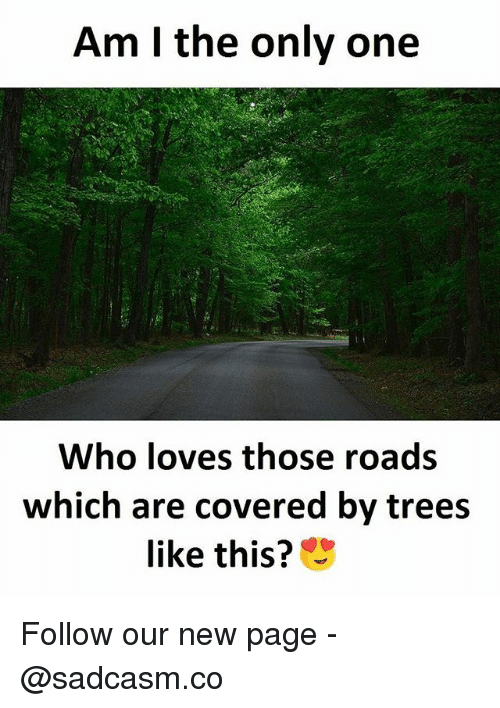 Memes, Trees, and Only One: Am I the only one  Who loves those roads  which are covered by trees  like this? Follow our new page - @sadcasm.co