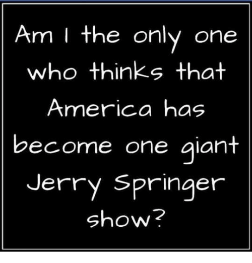 America, Jerry Springer, and The Jerry Springer Show: Am I the only one  who thinks that  America has  become one giant  Jerry Springer  Show?