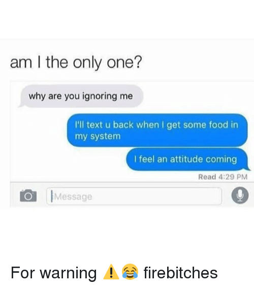 Food, Memes, and Text: am I the only one?  why are you ignoring me  I'll text u back when I get some food in  my system  I feel an attitude coming  Read 4:29 PM  Message For warning ⚠️😂 firebitches