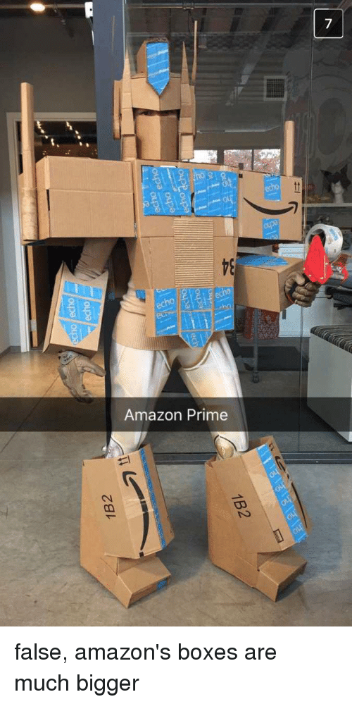 Amazon, Amazon Prime, and Funny: Amazon Prime false, amazon's boxes are much bigger