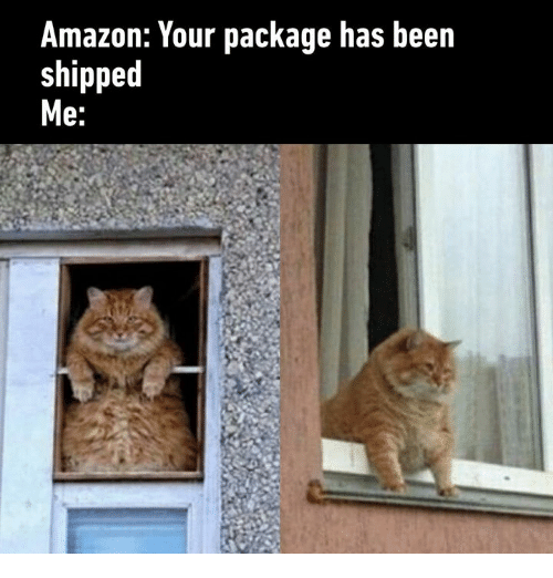 Amazon, Dank, and Been: Amazon: Your package has been  shipped  e: