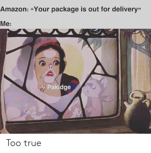 "delivery: Amazon: ""Your package is out for delivery""  Me:  Pakidge Too true"