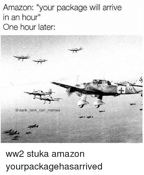 "Amazon, Dank, and Memes: Amazon: ""your package will arrive  in an hour""  One hour later:  @dank tank carl memes ww2 stuka amazon yourpackagehasarrived"