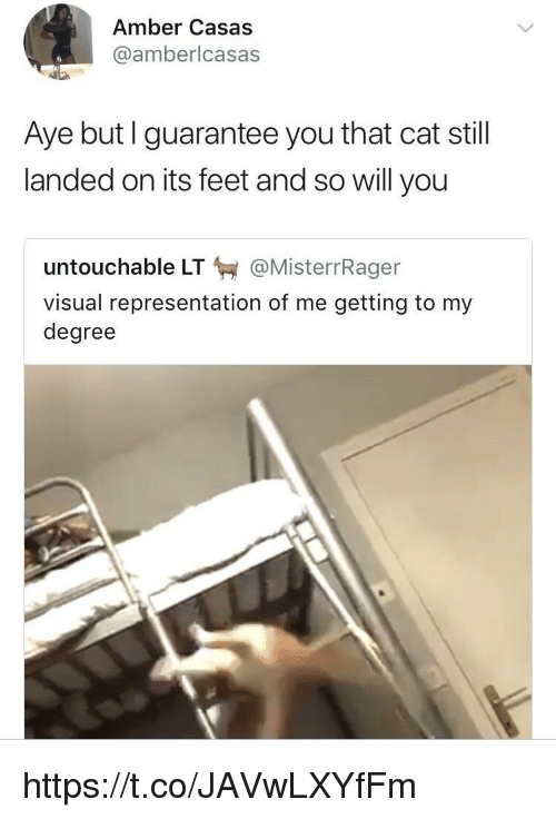 Memes, 🤖, and Feet: Amber Casas  @amberlcasas  Aye but I guarantee you that cat still  landed on its feet and so will you  untouchable LT @MisterrRager  visual representation of me getting to my  degree https://t.co/JAVwLXYfFm