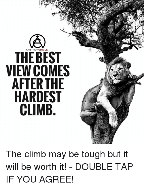 Climbing, Memes, and Tough: AMBITION  CIRCLE  THE BEST  VIEW COMES  AFTER THE  HARDEST  CLIMB The climb may be tough but it will be worth it! - DOUBLE TAP IF YOU AGREE!