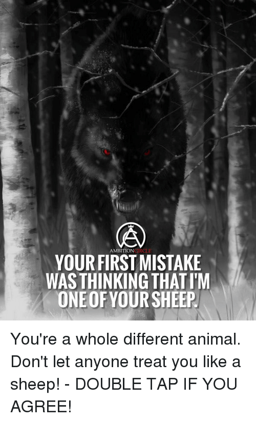Anyoning: AMBITION  HERO LE  YOUR FIRST MISTAKE  WAS THINKING THATIM  ONEOF YOUR SHEEP You're a whole different animal. Don't let anyone treat you like a sheep! - DOUBLE TAP IF YOU AGREE!
