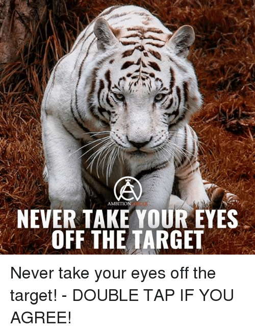 Memes, Target, and Ambition: AMBITION  NEVER TAKE YOUR EYES  OFF THE TARGET Never take your eyes off the target! - DOUBLE TAP IF YOU AGREE!