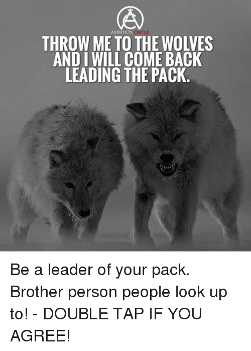 Memes, Wolves, and Back: AMBITIONCIRCLE  THROW ME TO THE WOLVES  AND I WILL COME BACK  LEADING THE PACK Be a leader of your pack. Brother person people look up to! - DOUBLE TAP IF YOU AGREE!
