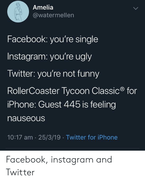 Youre Ugly: Amelia  @watermellen  Facebook: you're single  Instagram: you're ugly  Twitter: you're not funny  RollerCoaster Tycoon Classic  iPhone: Guest 445 is feeling  nauseous  for  10:17 am 25/3/19  Twitter for iPhone Facebook, instagram and Twitter